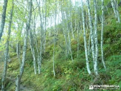 Yacimientos Atapuerca - Sierra de la Demanda; atención exclusiva al socio;viajes turismo activo
